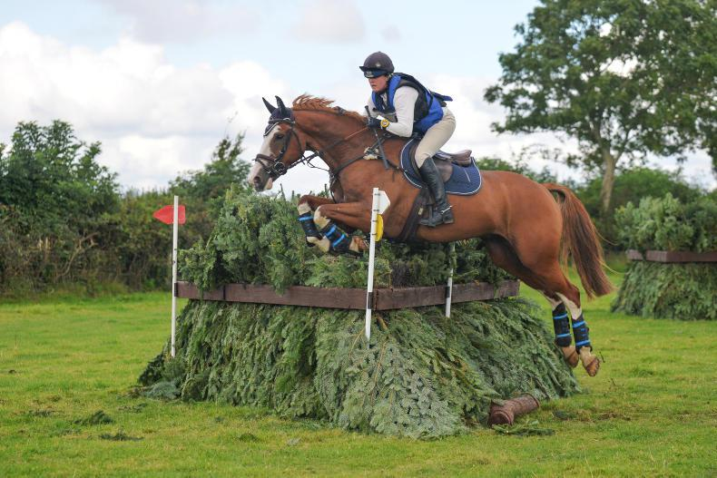 EVENTING: Prowse wins ISH studbook final