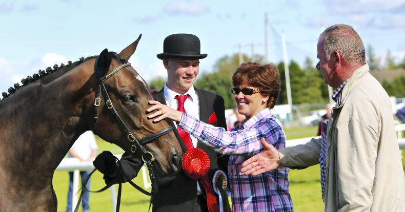 AROUND THE COUNTRY: First-time All Ireland win for Cahalane at Clarecastle Show