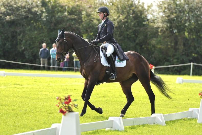 EVENTING:  Price holds narrow lead at Ballindenisk