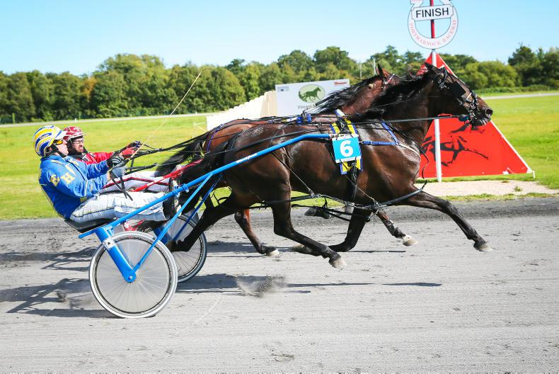 HARNESS RACING: Caffrey collects with Bath Lane