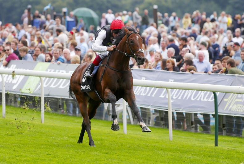 Cracksman ruled out of Arc by John Gosden and Anthony Oppenheimer