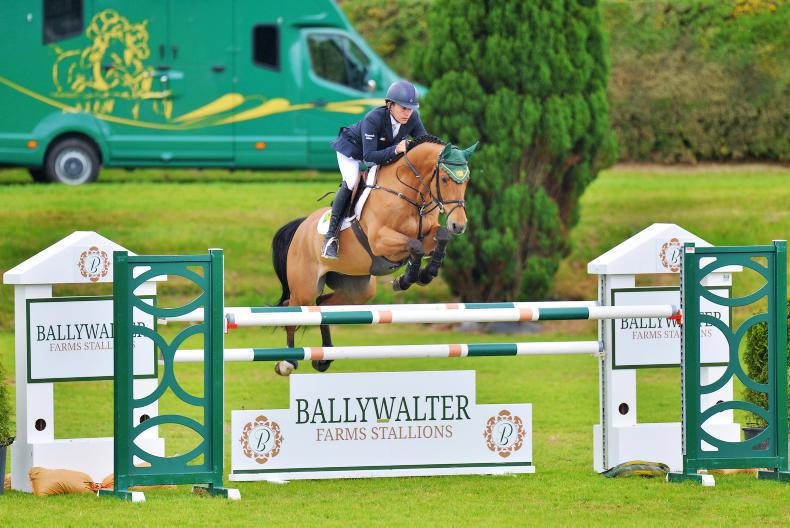 NEWS: 13 Irish Sport Horses through to world breeding finals