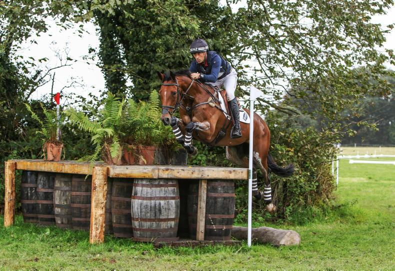 BALLINDENISK INTERNATIONAL:   Price battles back to win CCI3*