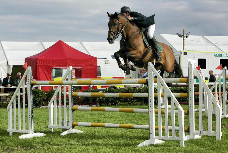 CAVAN SALES PREVIEW:  Proven ponies and horses offered