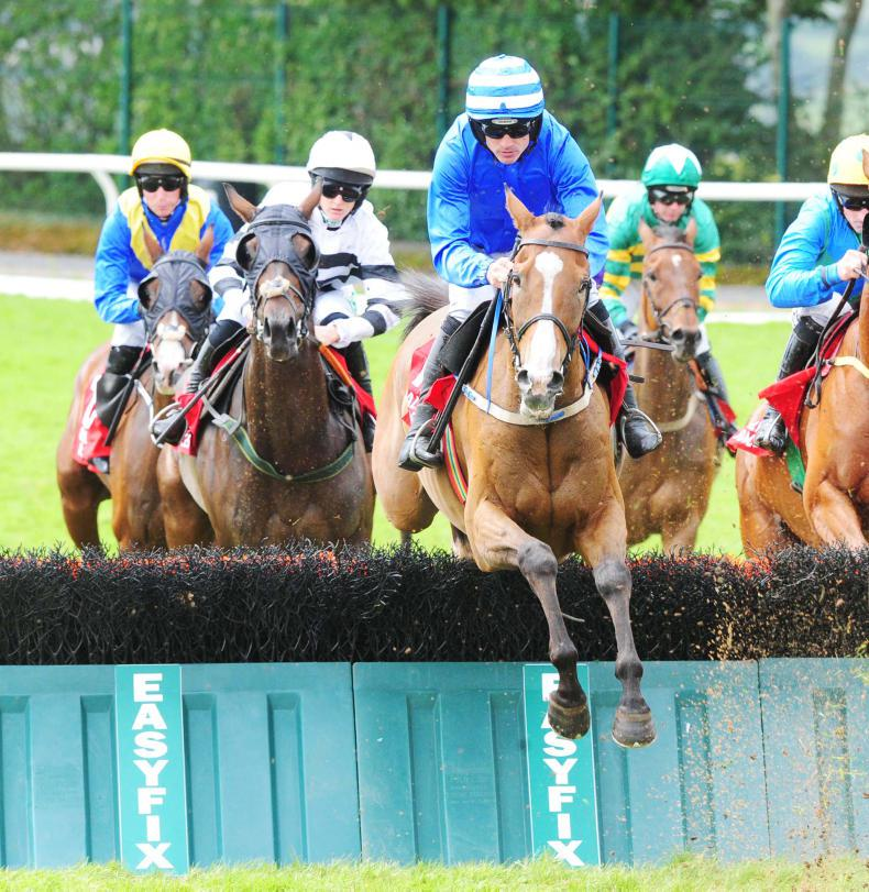 GOWRAN SATURDAY: Revised weights give Shaneshill a good chance