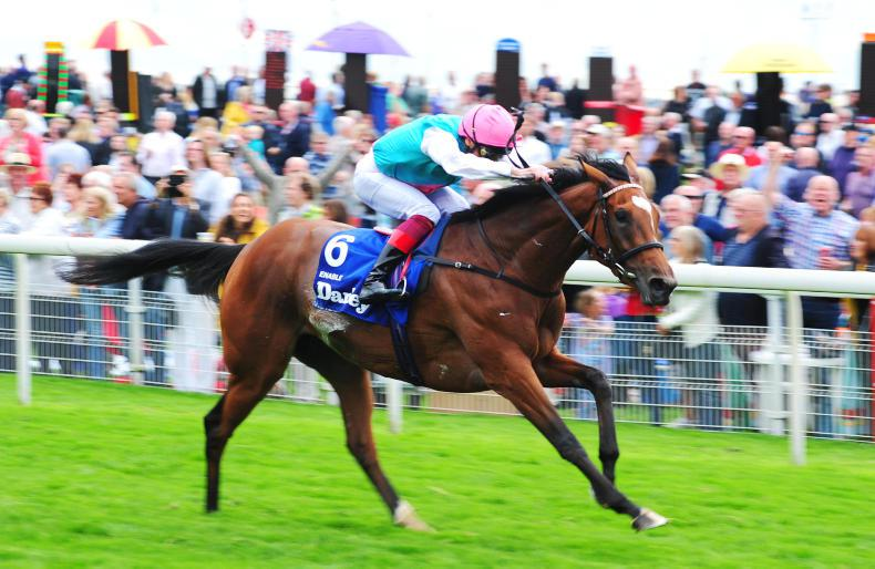 FRENCH PREVIEW: Enable can strike for the fillies again