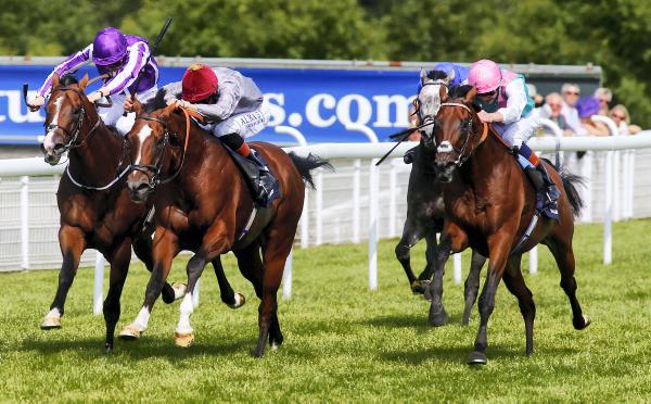 Kingman's brilliance topples Toronado