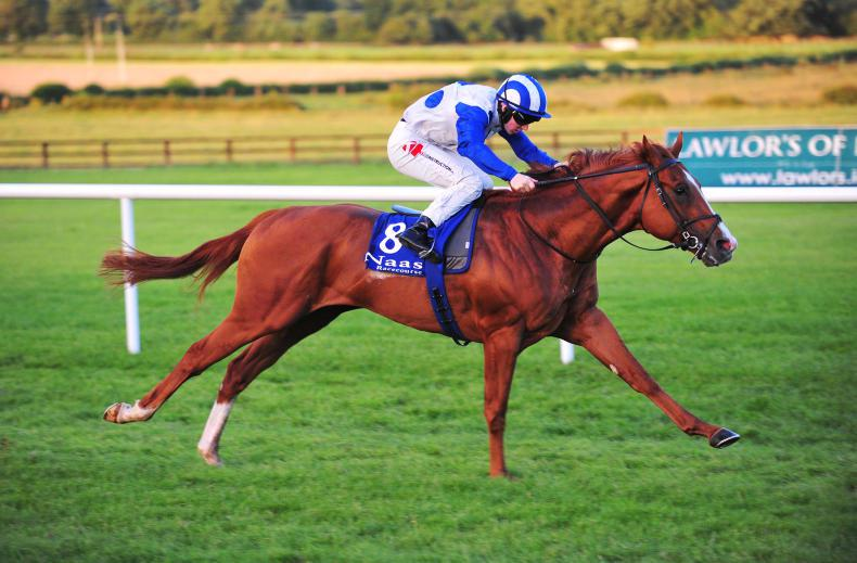 Psychedelic Funk hits the right note at Tipperary