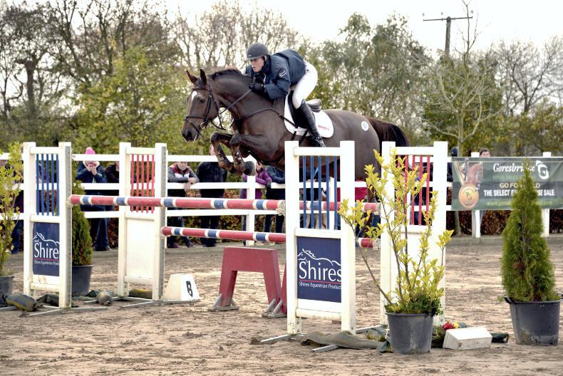 NEWS:  Supreme show jumping sale cancelled for 2017