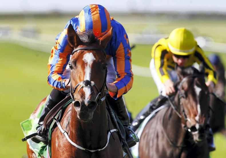 SIMON ROWLANDS: Clemmie much the best of the Ballydoyle fillies