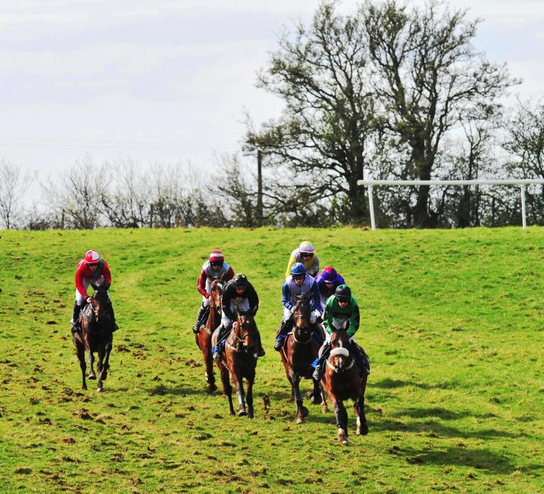 POINT-TO-POINT:   Fixtures positives but many mares make trouble