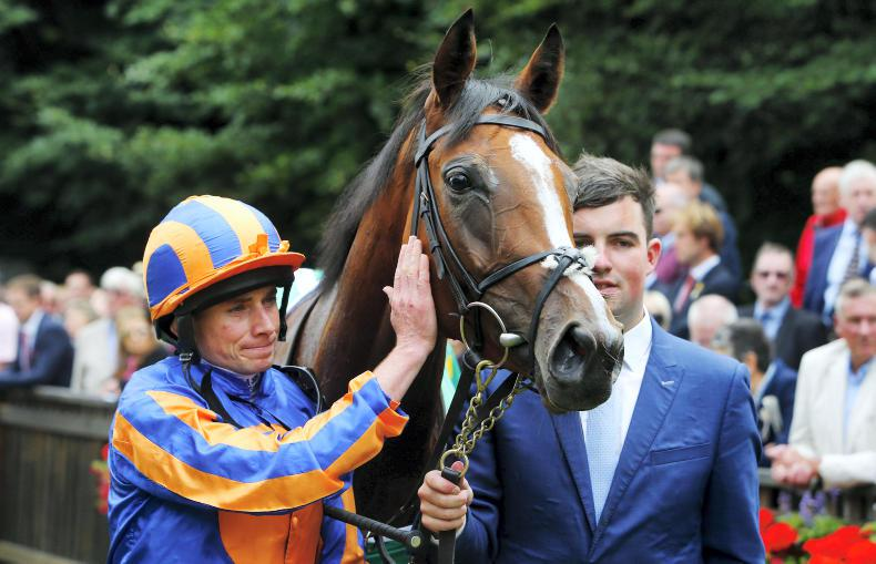 PEDIGREE NOTES: Four Group 1 wins and a new milestone for Galileo