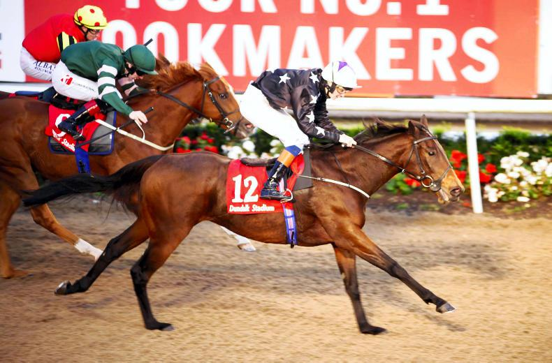 MARGIE McLOONE: Contrasting winners for Northern trainers at Dundalk