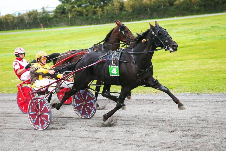 HARNESS RACING: Rambler rules in controversial final