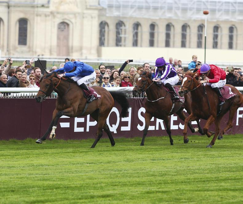 Global Group 1 success for Darley's Dubawi