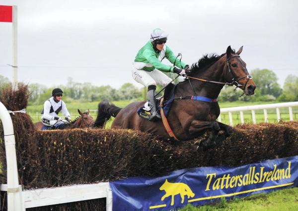 Peggy Do does the job at Fairyhouse