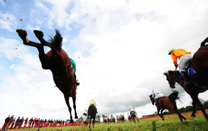 BEHIND THE SCENES: Bruff point-to-point