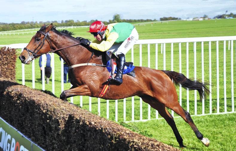 Born To Size off the mark over fences at Thurles