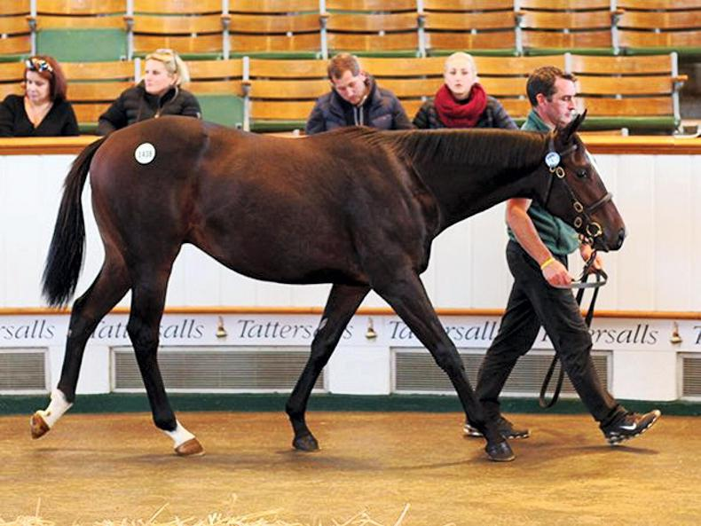 Opening day of Book 3 led by 85,000gns son of Bated Breath