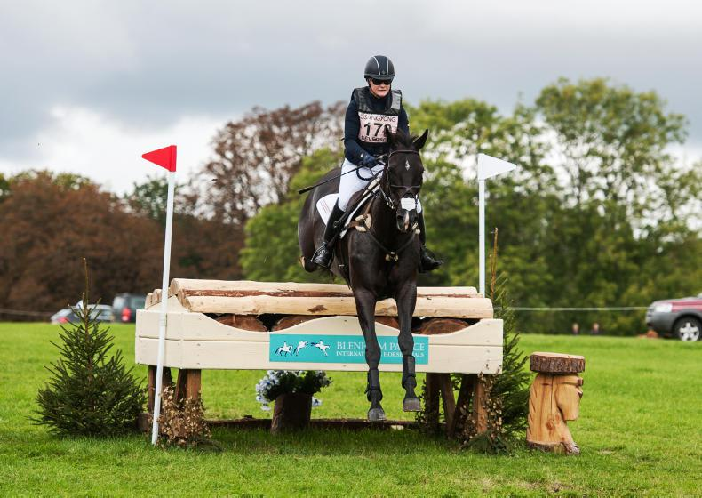 FEATURE:  Record eventing win for the ISH studbook as WBFSH rankings released