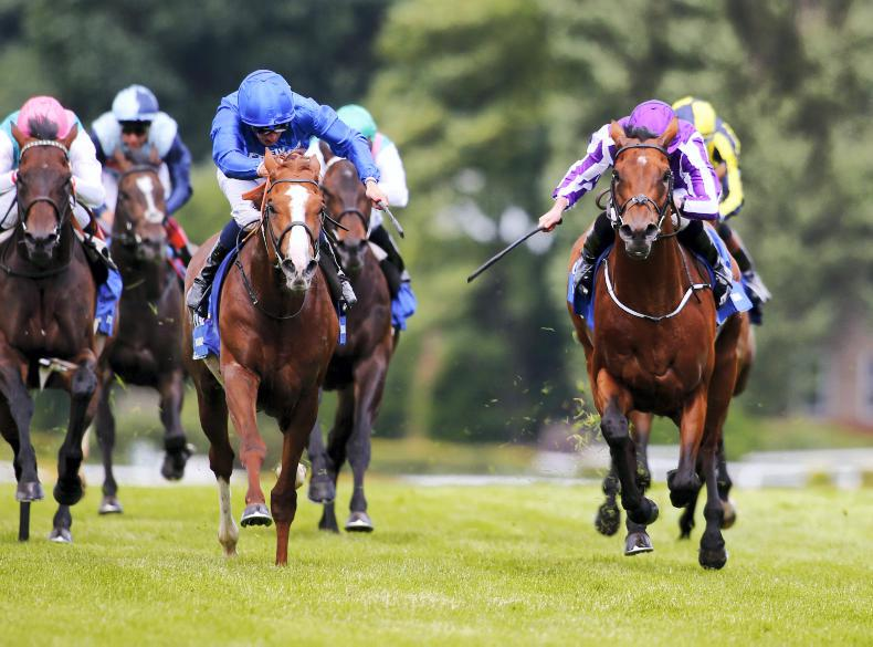 Free Drop Billy heads to Breeders' Cup