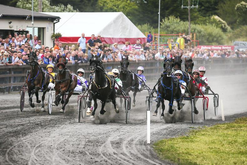 The Irish Field to sponsor Leading Driver award