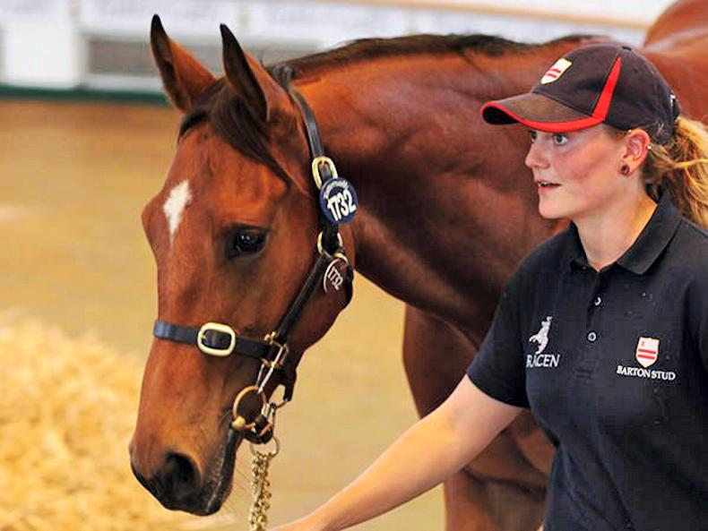 Farhh filly tops second day of Book 3 at 110,000gns