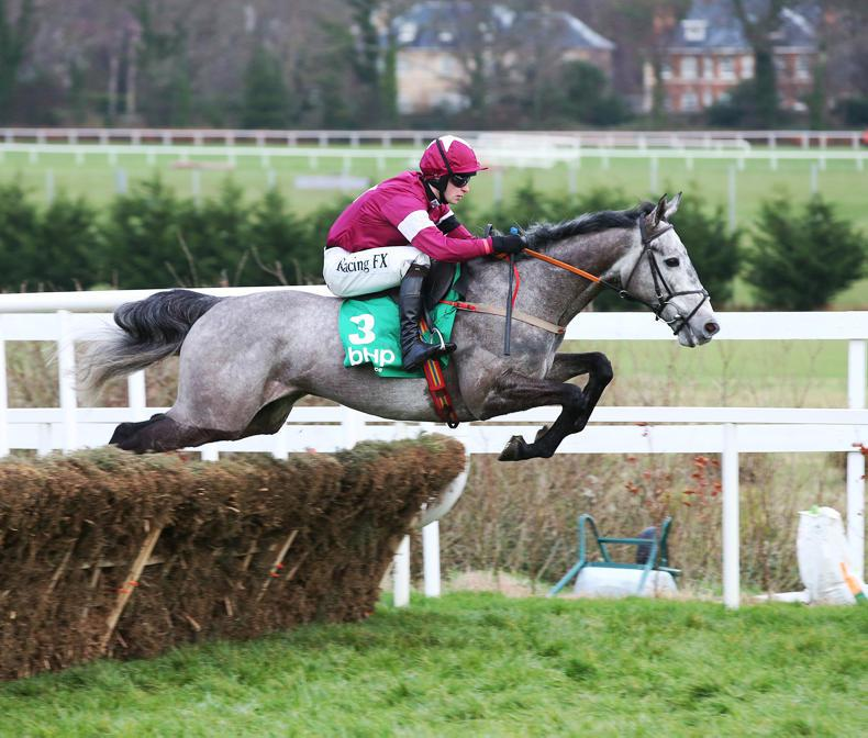 Petit Mouchoir stars as action returns to Punchestown