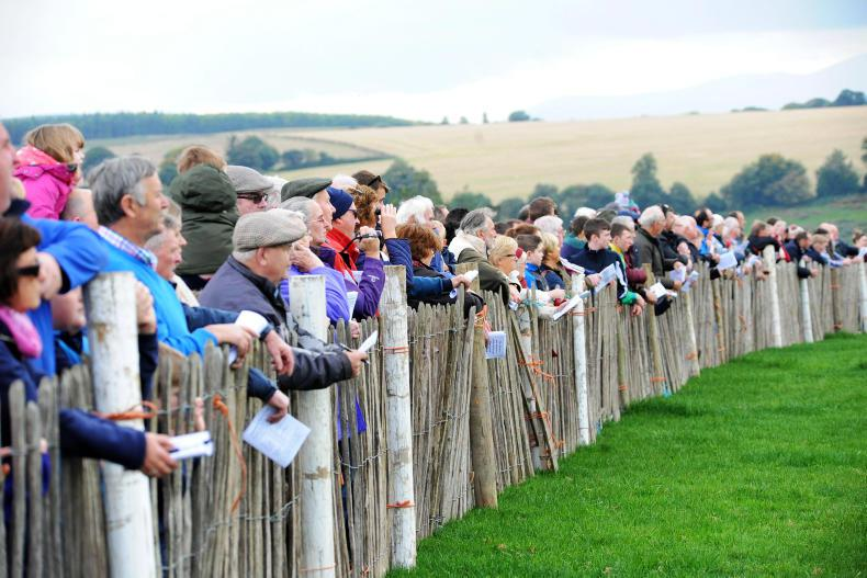 BEHIND THE SCENES: Tinahely point-to-point