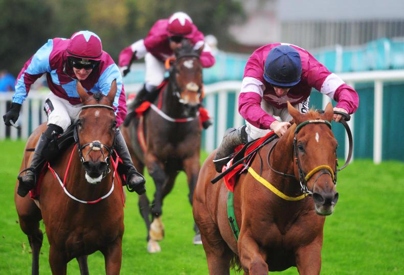 Road To Respect takes Irish Daily Star Chase at Punchestown