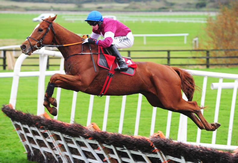 THE WEEK THAT WAS: Bring on the jumping horses!