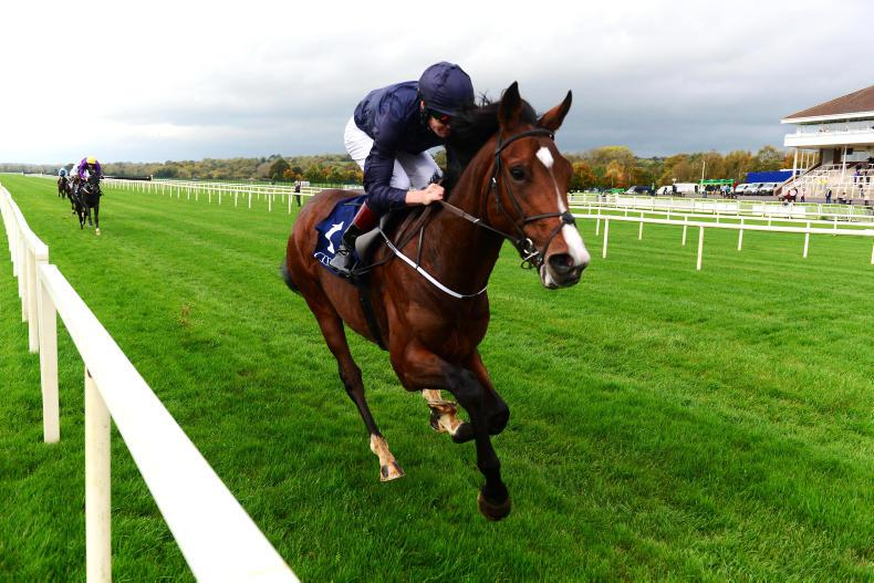 LADBROKES NAP TABLE: Selections for weekend October 21/22nd