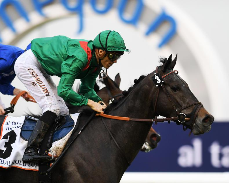 FRENCH PREVIEW: Vazirabad for Royal-Oak repeat