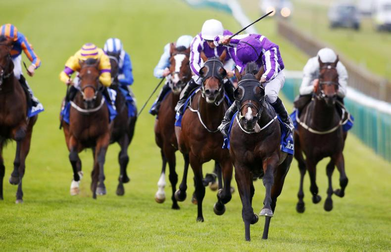 BRITAIN:  U S flies the Flag as O'Brien dominates Dewhurst