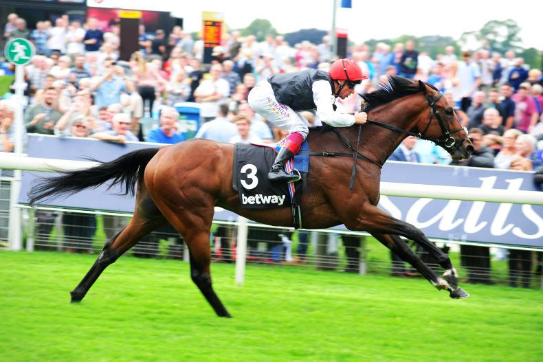 Cracksman simply dazzling in Champion Stakes at Ascot