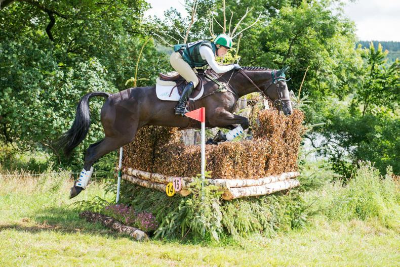 NEWS: Top rating for overlooked event horse