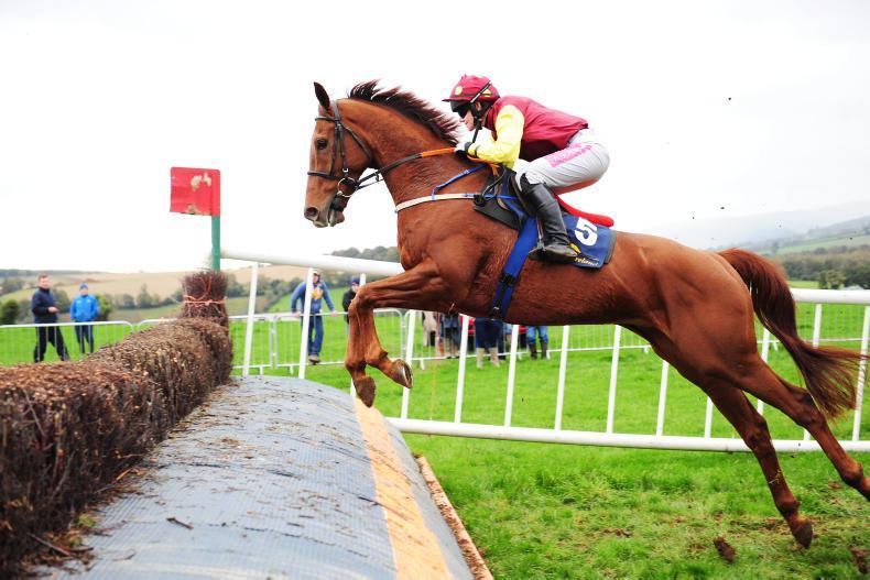 SHILLELAGH SUNDAY: O'Sullivan takes round one