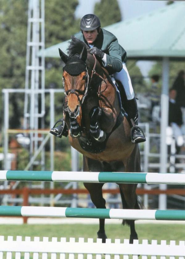 Goresbridge Horse Sales season opener
