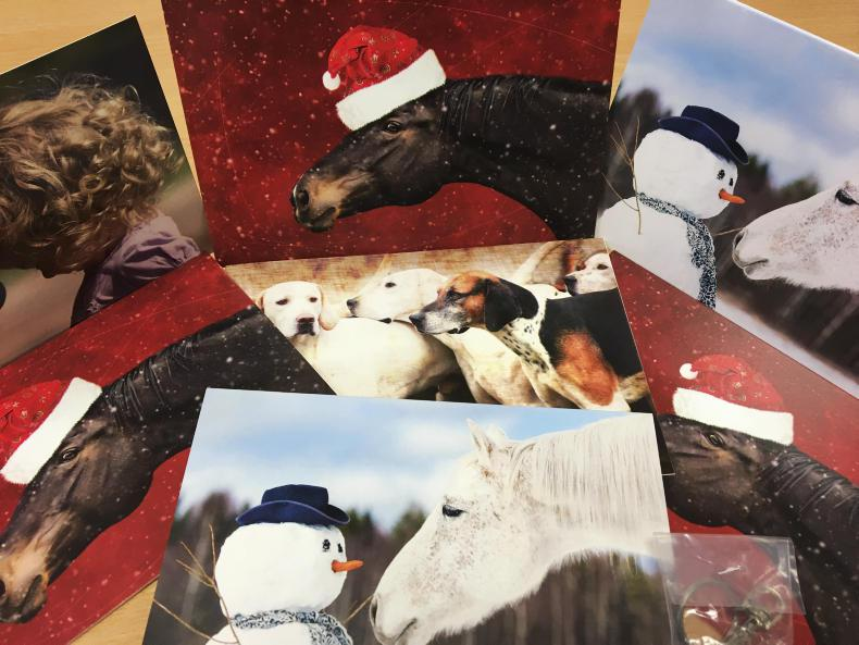 PONY TALES:  RDAI Christmas cards available