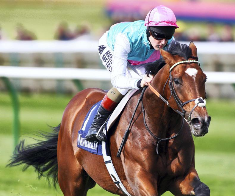 THE WEEK THAT WAS: Has Frankel's cracked it?