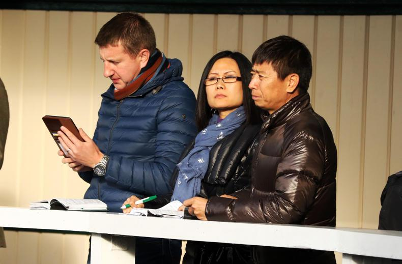 Chinese owner buys 39 yearlings at Goffs Sale