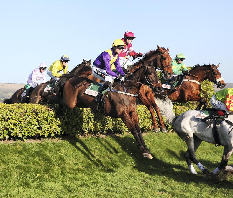 Cheltenham announces changes to conditions for amateur heats at the Festival