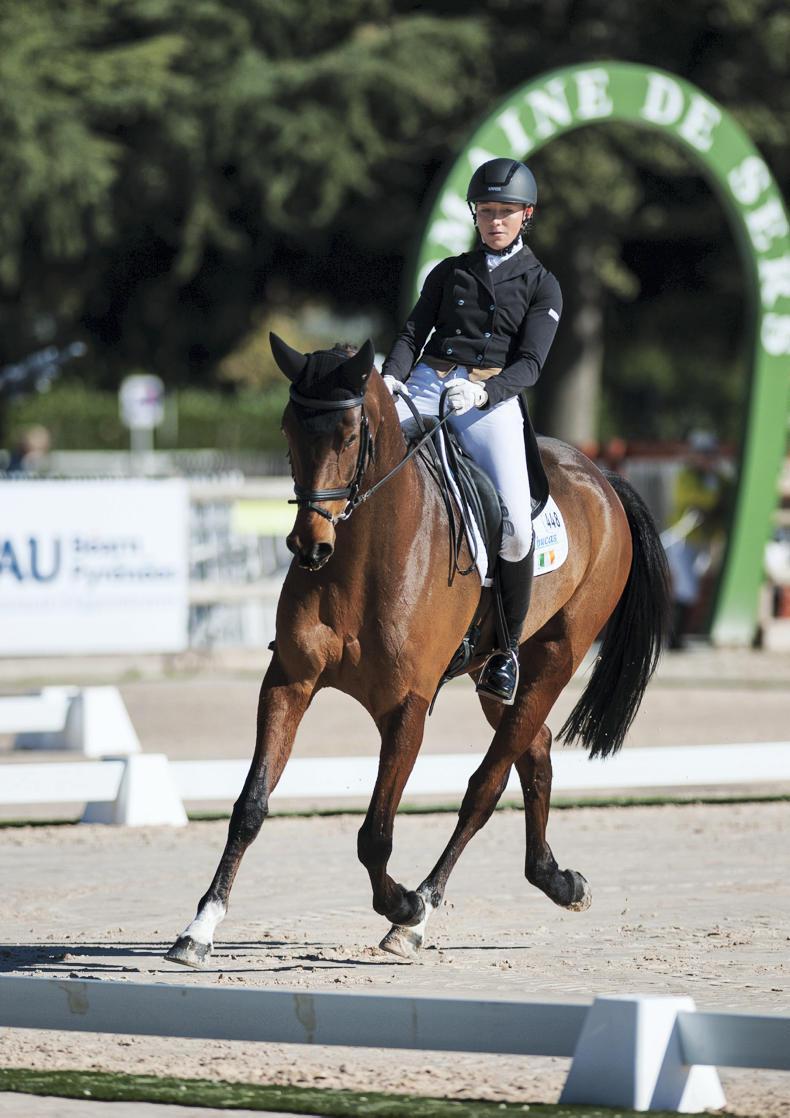NEWS:  Rose holds narrow lead at Pau