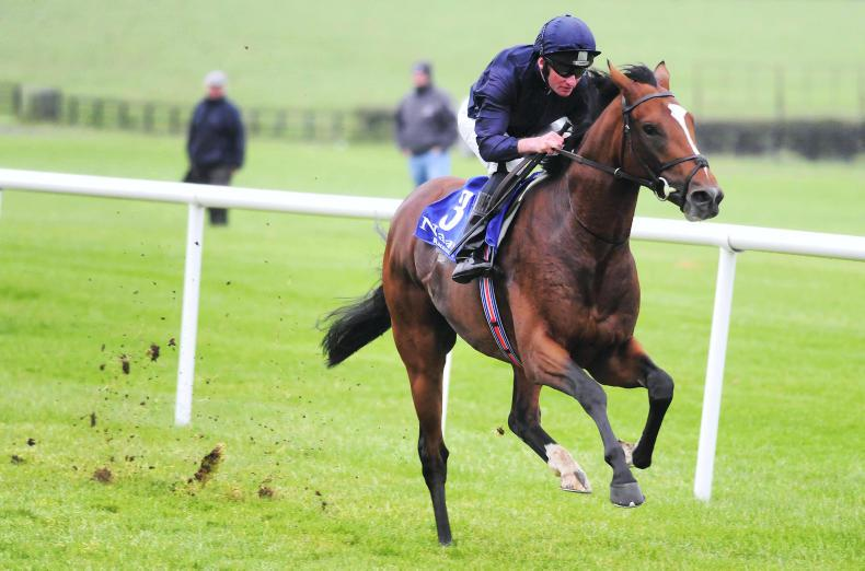 Record-breaking O'Brien strikes at Leopardstown with Flag Of Honour