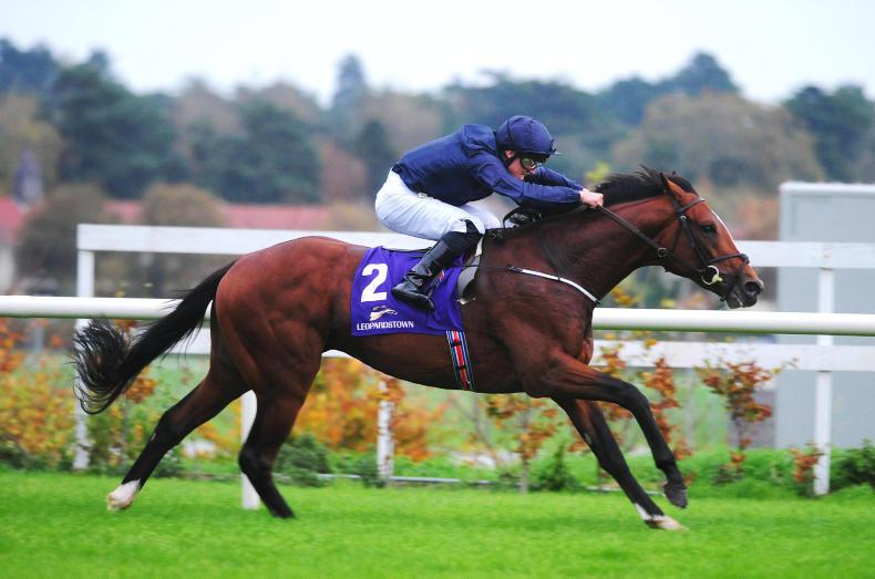 LEOPARDSTOWN SATURDAY: Flag Of Honour stars in the feature