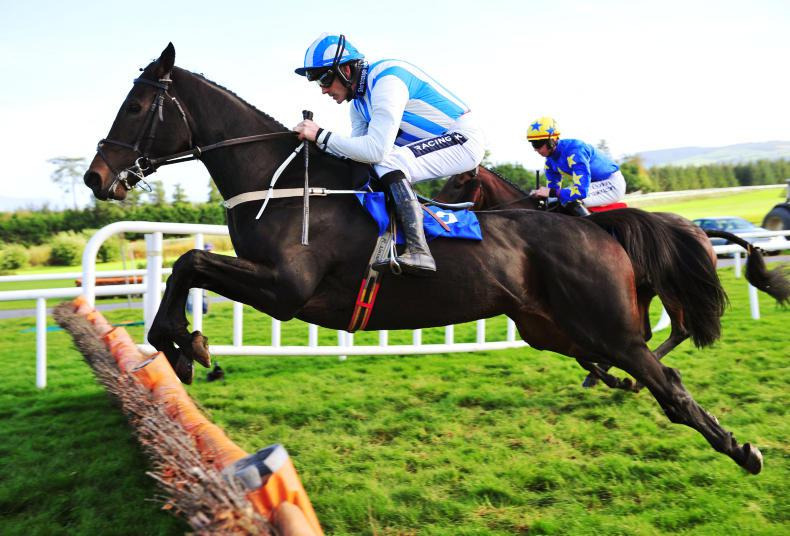 Willie Mullins and Ruby Walsh target more Down Royal joy with Mystic Theatre