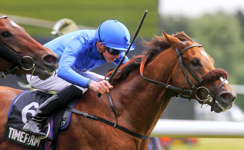 BREEDERS' CUP: A Brave run can take the Mile