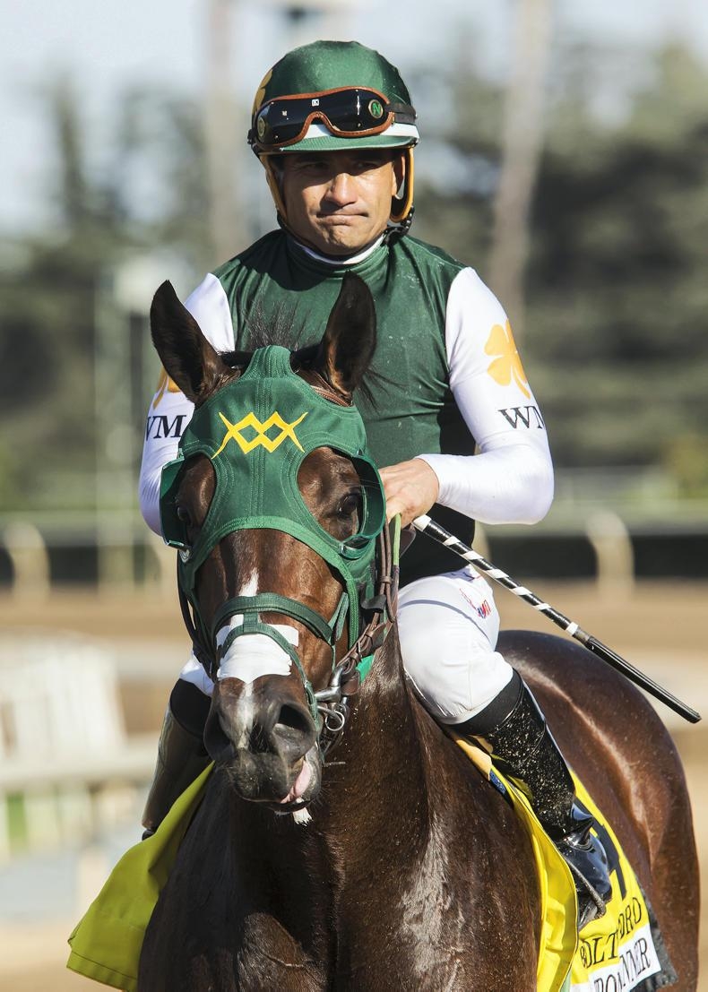 BREEDERS' CUP: Bolt d'Oro has it all