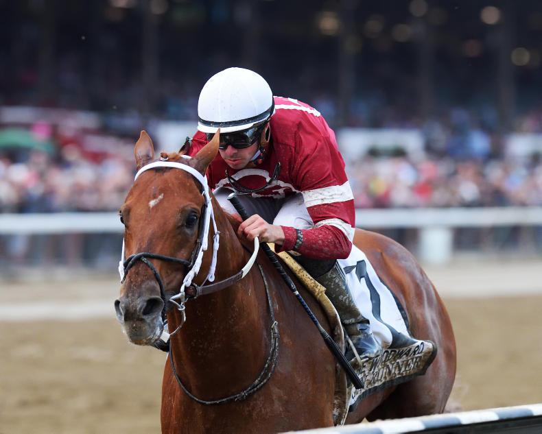 BREEDERS' CUP: Gun Runner to shoot to stardom