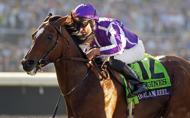 BREEDERS' CUP: Reel set for final fling